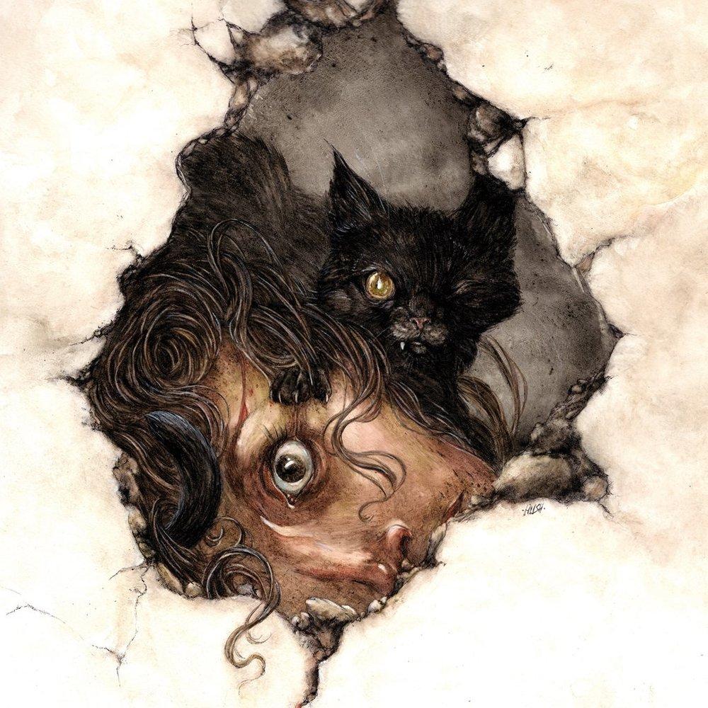 el gato negro edgar allan poe frases